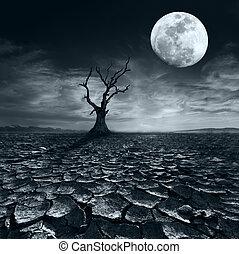 eenzaam, dode boom, op, volle maan, nacht, onder, dramatisch, bewolkte hemel
