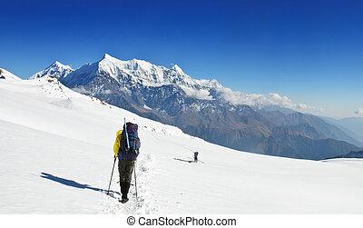 eenzaam, groot, fieldsin, sneeuw, trekkers, himalaya