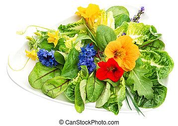 eetbaar, slaatje, gezond voedsel, flowers., groene, fris, tuin