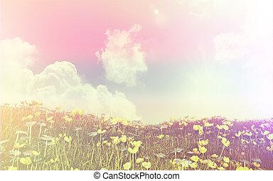 effekt, retro, butterblumen, gänseblümchen, landschaftsbild, 3d