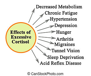 effets, cortisol, excessif, dix