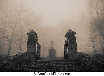 effrayant, cimetière, vieux, entrée, forêt dense, brouillard