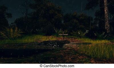 effrayant, forêt tropicale humide, nuit, frais, tombe, 4k