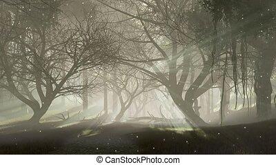 effrayant, mystique, forêt, nuit, luciole, 4k, lumières