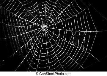 effrayant, toile, halloween, araignés, joli, effrayant