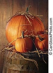 efterår, destillationsapparat liv, pumpkins, tønde
