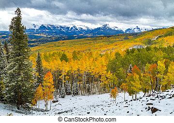 efterår farve, og, sne, ind, colorado