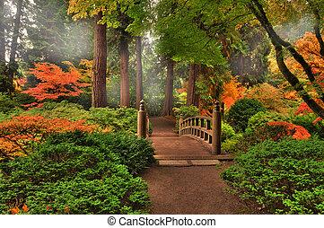 efterår, ind, en, park
