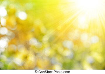 efterår, natur, baggrund