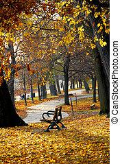 efterår, park
