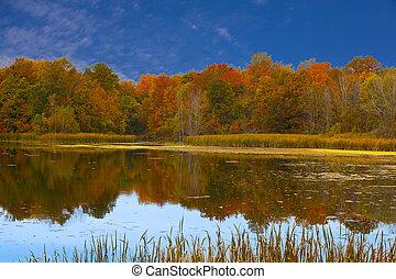 efterår, reflektioner