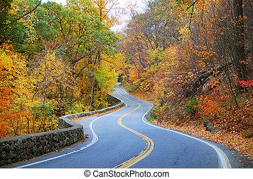efterår, snoet, farverig, vej