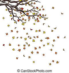 efterår, træ