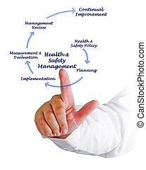 egészség, &, biztonság, vezetőség