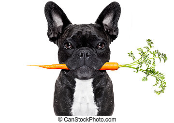 egészséges táplálék, kutya