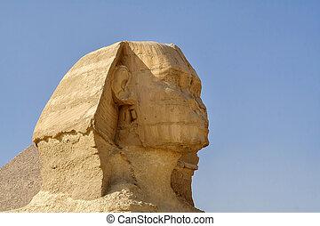 egípcio, cabeça, a, sphinx.