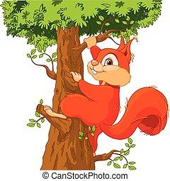 egern, på, den, træ