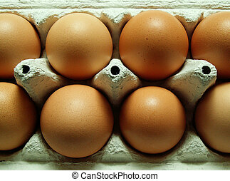 egg carton - brown eggs in a carton