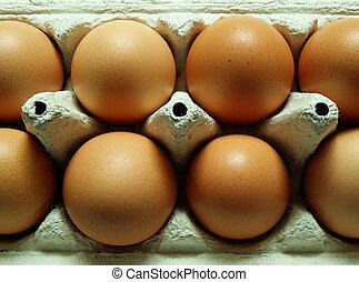 egg carton - brown eggs in a carton