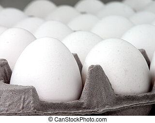 Egg Carton - Shallow dof with focus on front egg.