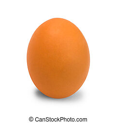 egg chicken isolated on white background