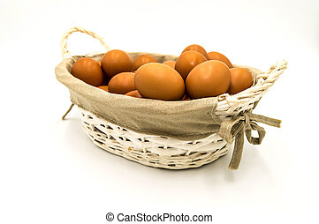Egg collection isolated on white