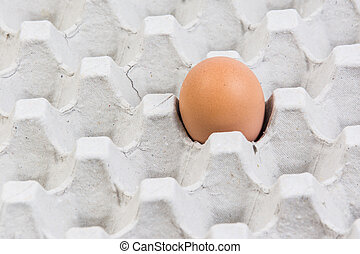 Egg in an egg crate