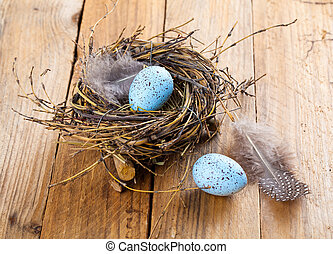 egg in birds nest on wooden background