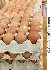 Egg in the panel at the market