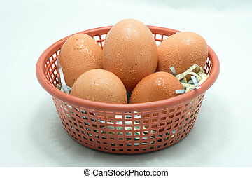 Egg in the plastic basket Isolated on white