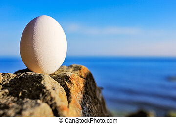 Egg on the coast