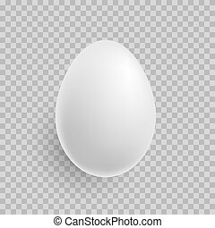 Egg. Realistic white egg icon isolated on transparent background. Vector.