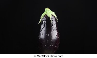 eggplant, close - up. Drops of water fall on a rotating apple on a black background. super slow-motion.