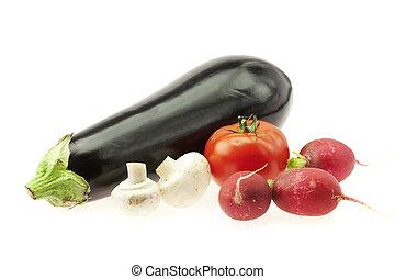 eggplant radishes tomatoes and mushrooms isolated on white