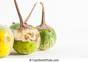 eggplant rot on white paper background