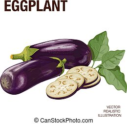 Eggplant. The illustration on a white background, made with...