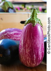 Eggplants of different color and variety on the table
