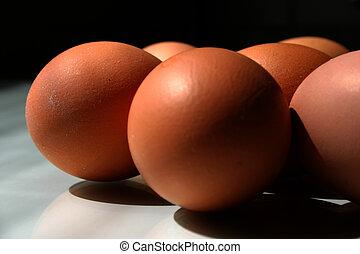 Eggs [2]