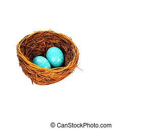 Eggs and nest - , two blue eggs in a birds nest,over white