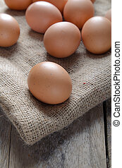 Eggs are laid on the fabric