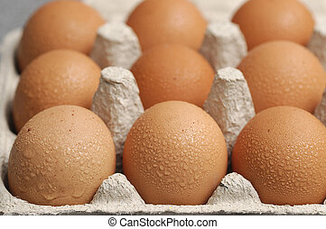 Eggs displayed in a carton