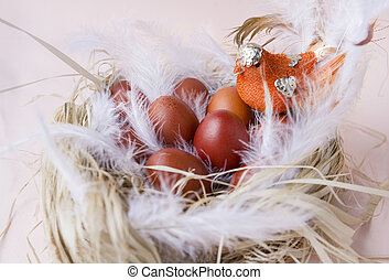 eggs, Easter, nest, bird, painted, brown, Easter eggs, feathers,