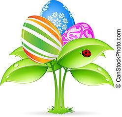 eggs-flowers, pascua, tarjeta, mariquita