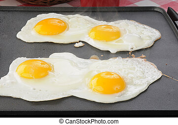 Four eggs frying on a non stick griddle with steam coming up