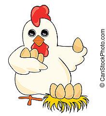 eggs., gallina