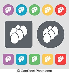 eggs icon sign. A set of 12 colored buttons. Flat design. Vector