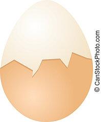 Eggs illustration - Hardboiled Egg cracked half shell ...