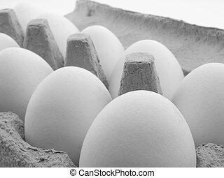 eggs in a carton on white background