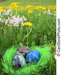 Eggs in a green grass