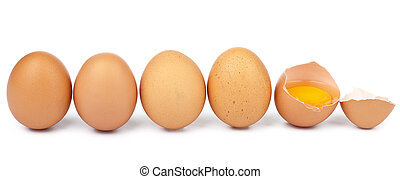 eggs in a row isolated